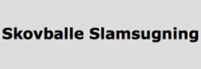skovballe-slamsugning