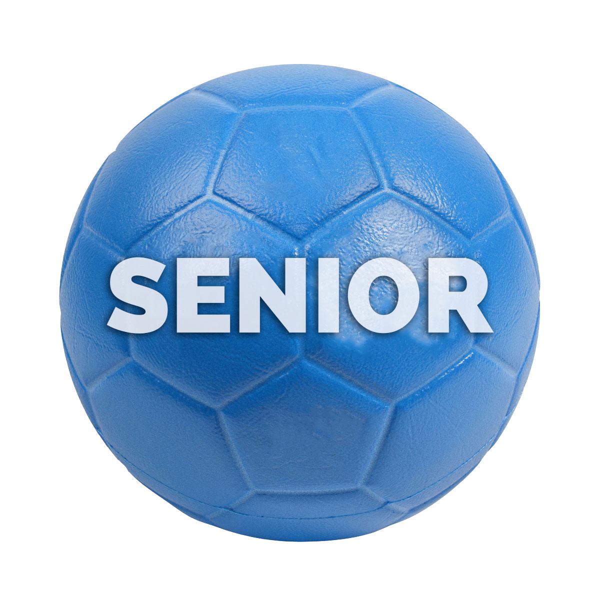 håndboldt senior